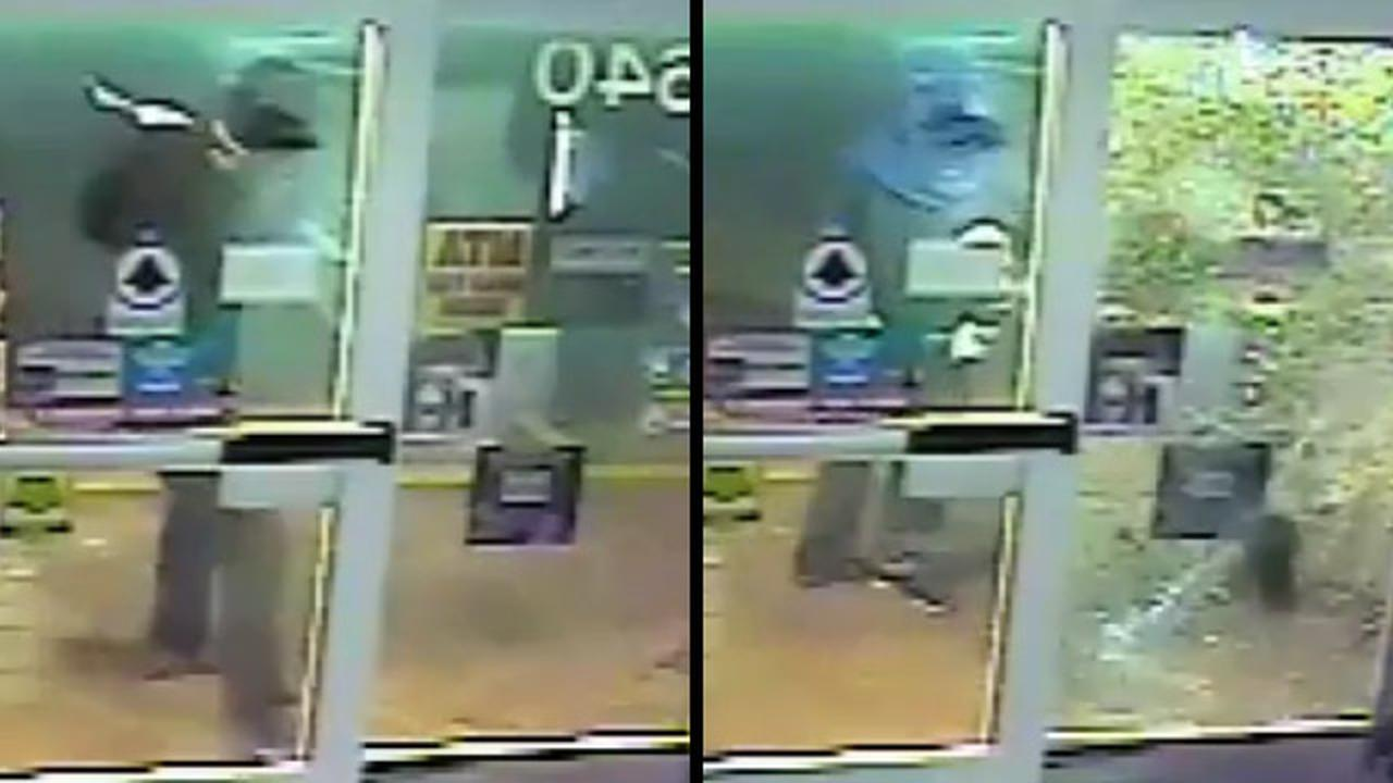 Wimpy Robbers Fail To Break Glass During Pathetic Burglary Attempt
