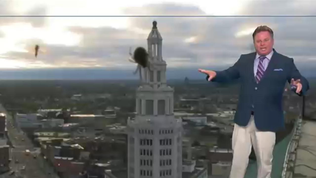 Spider Causes Weatherman To Lose His Damn Mind On Live Television