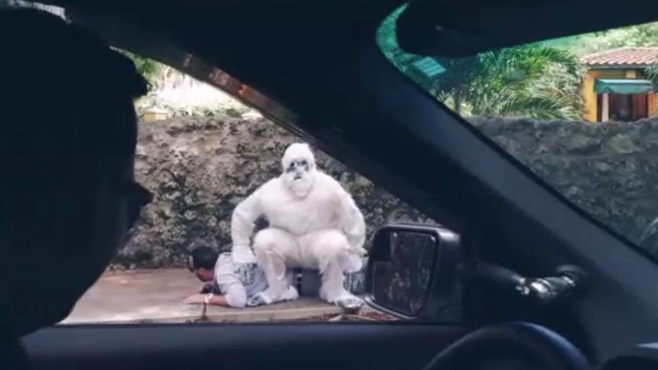 Miami Police Show You How To Use A Yeti To Stop Car Thieves