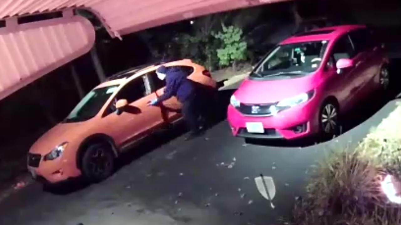 Bold Thief Rifles Through Unlocked Car