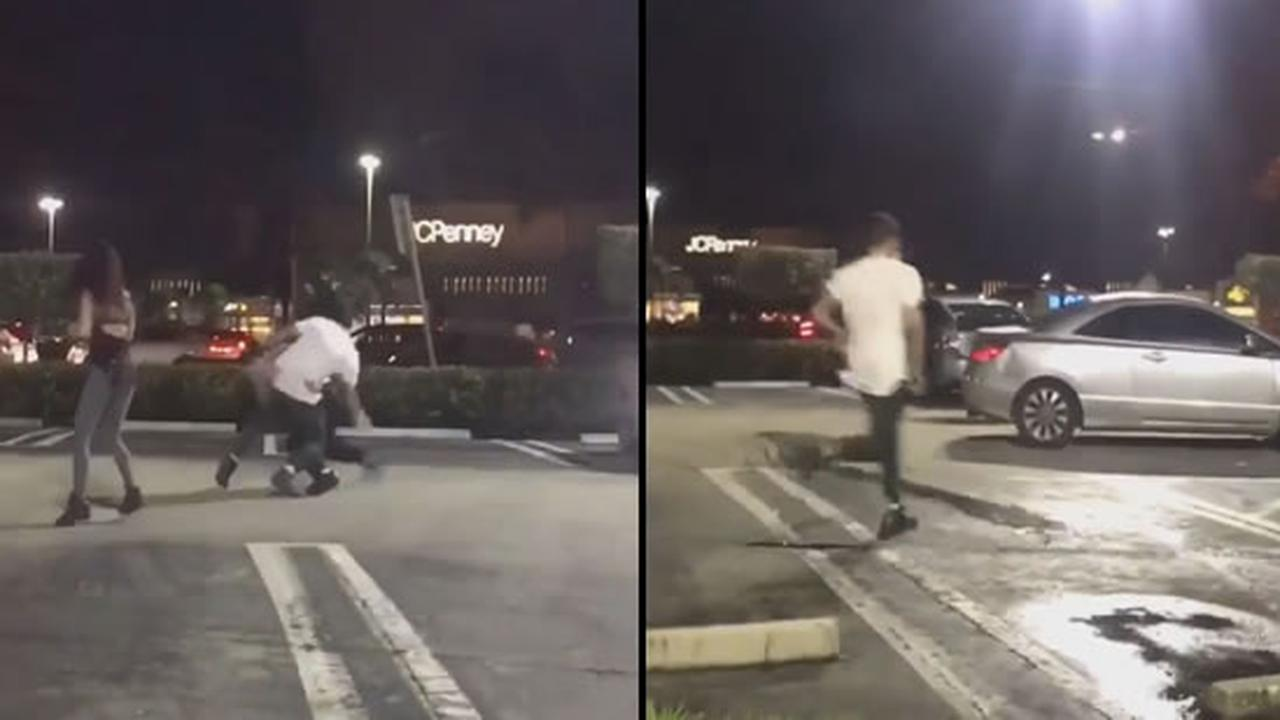 Is This A Street Fight Or A Wwe Audition?