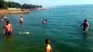 European Guys Find Frisbee. What They Do With It Will Make You Facepalm So Hard.
