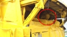 Mustard Truck Wrecks On Russian Highway, Results In A Gigantic Yellow Mess