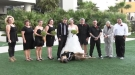 When You Hire A Dog As Ring Bearer