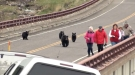 Oblivious Tourists In Yellowstone Confronted By Bear Who Was Protecting Her Cubs