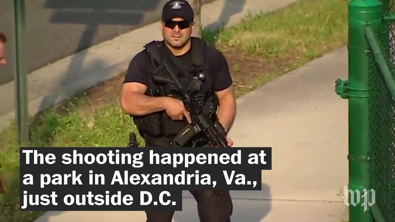 What we know about the congressional baseball shooter