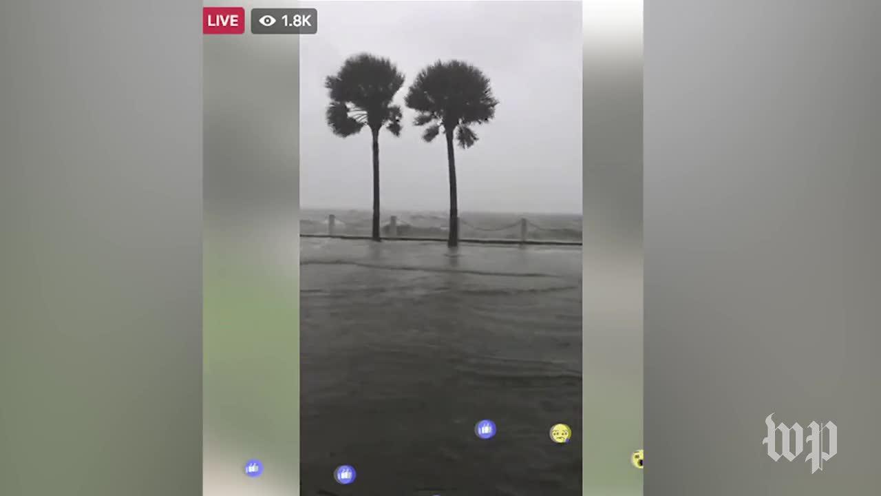 Fierce Winds Batter Miami
