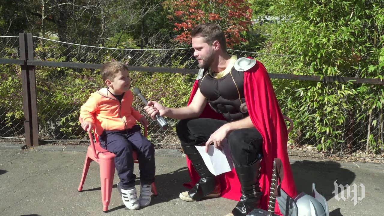 Short Takes: Thor Visits The National Zoo