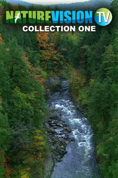 Naturevision TV Live